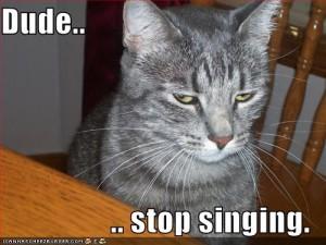 Stop Singing
