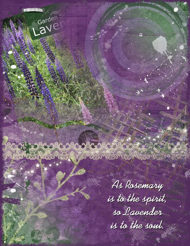 Lavender Garden Seeds