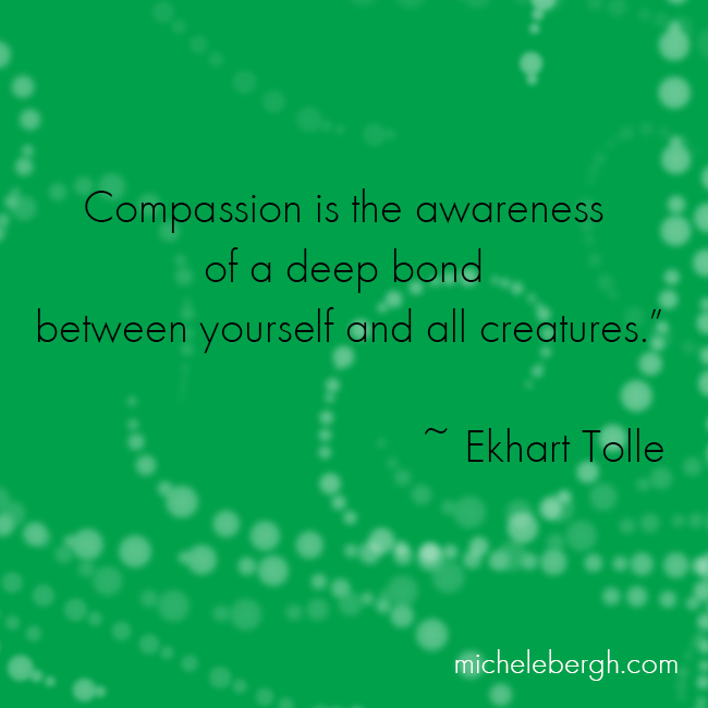 Compassion is Awareness