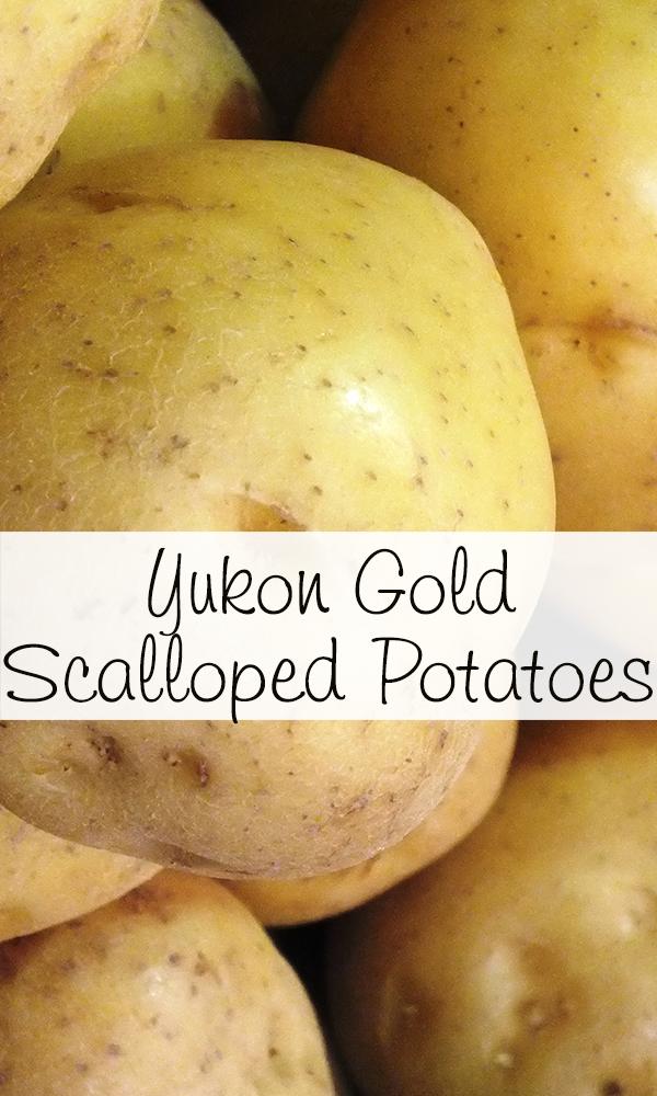 Yukon Gold Scalloped Potatoes